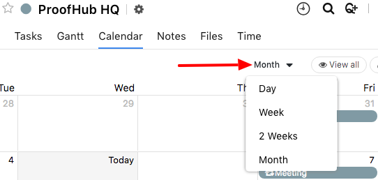 Changing the views of calendar