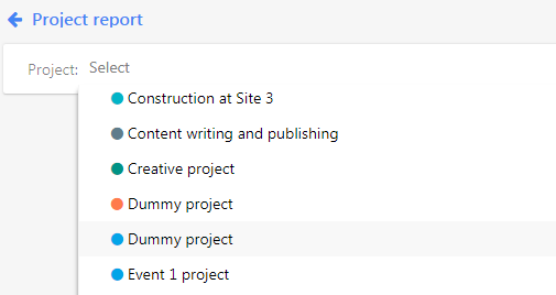 select project report
